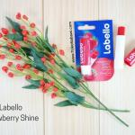 Lip Balm Labello Strawberry Shine Original/Pelembab Bibir/Lip Gloss Lip Ice/Perlengkapan Haji Umroh